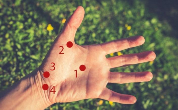 Punkty marma cz. 5 – dłonie