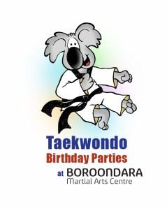 Taekwondo Birthday Party