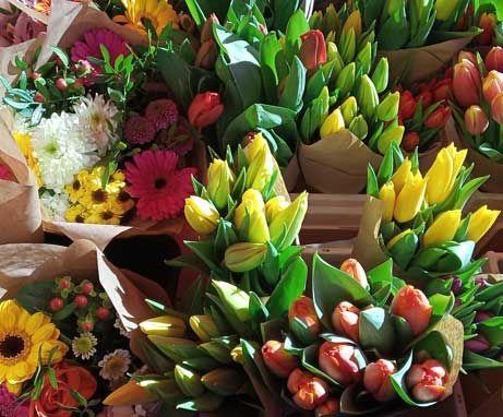 Tulipany natargu w Pradze