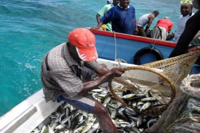 Tax refund on the way for Fishermen