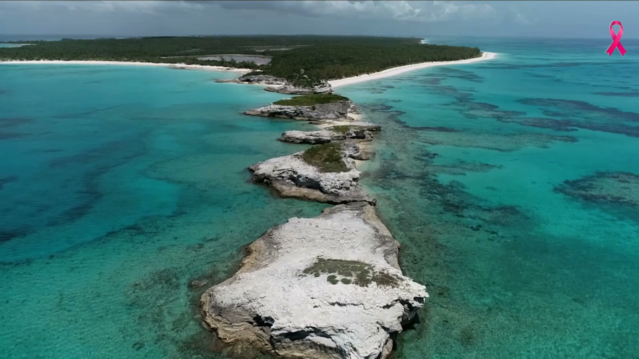 Eleuthera residents elated after Gov't. grants approval to Disney