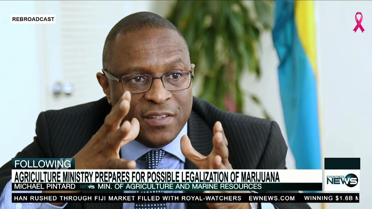 Minister receives cannabis proposals