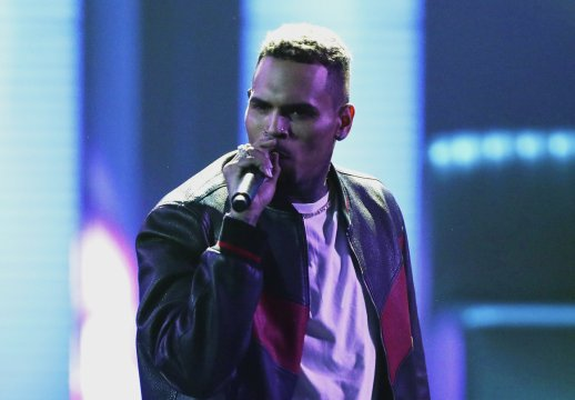 Chris Brown charged with monkey-related misdemeanors
