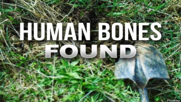 Human skeletal remains discovered