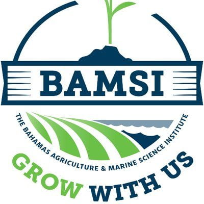 Fire erupts at BAMSI's Nassau facility – Distribution Center