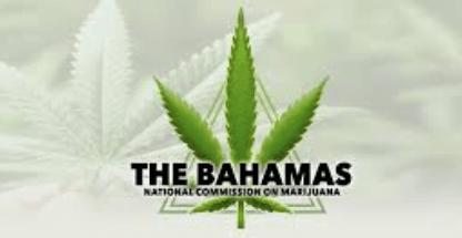 Marijuana commission reconvenes today