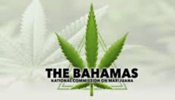 Marijuana commission reconvenes today – EyeWitness News