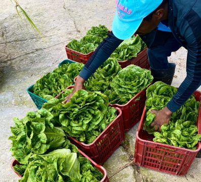 BAMSI donates produce to first responders