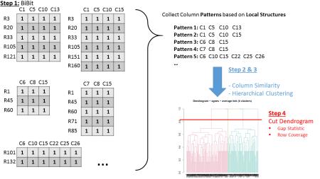 BiBit Workflow - Schematic (Step 1-4)