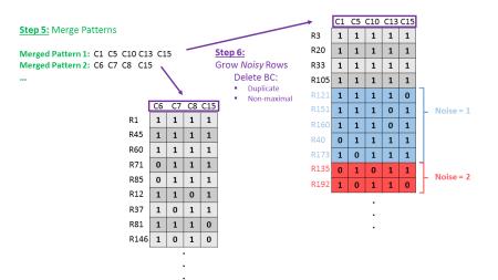 BiBit Workflow - Schematic (Step 5-6)