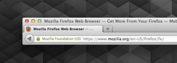 Mozilla's site identity indicator