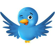 Flying Twitter bird