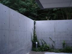 06Naoshima: artificial architecture