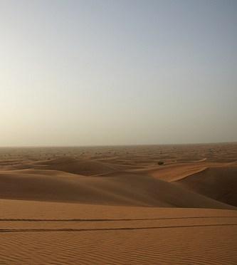 Dubai Desert safari ドバイ・デザート(砂漠)サファリ