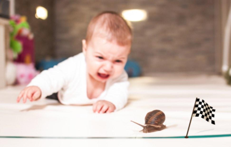 daddy diary snail slow