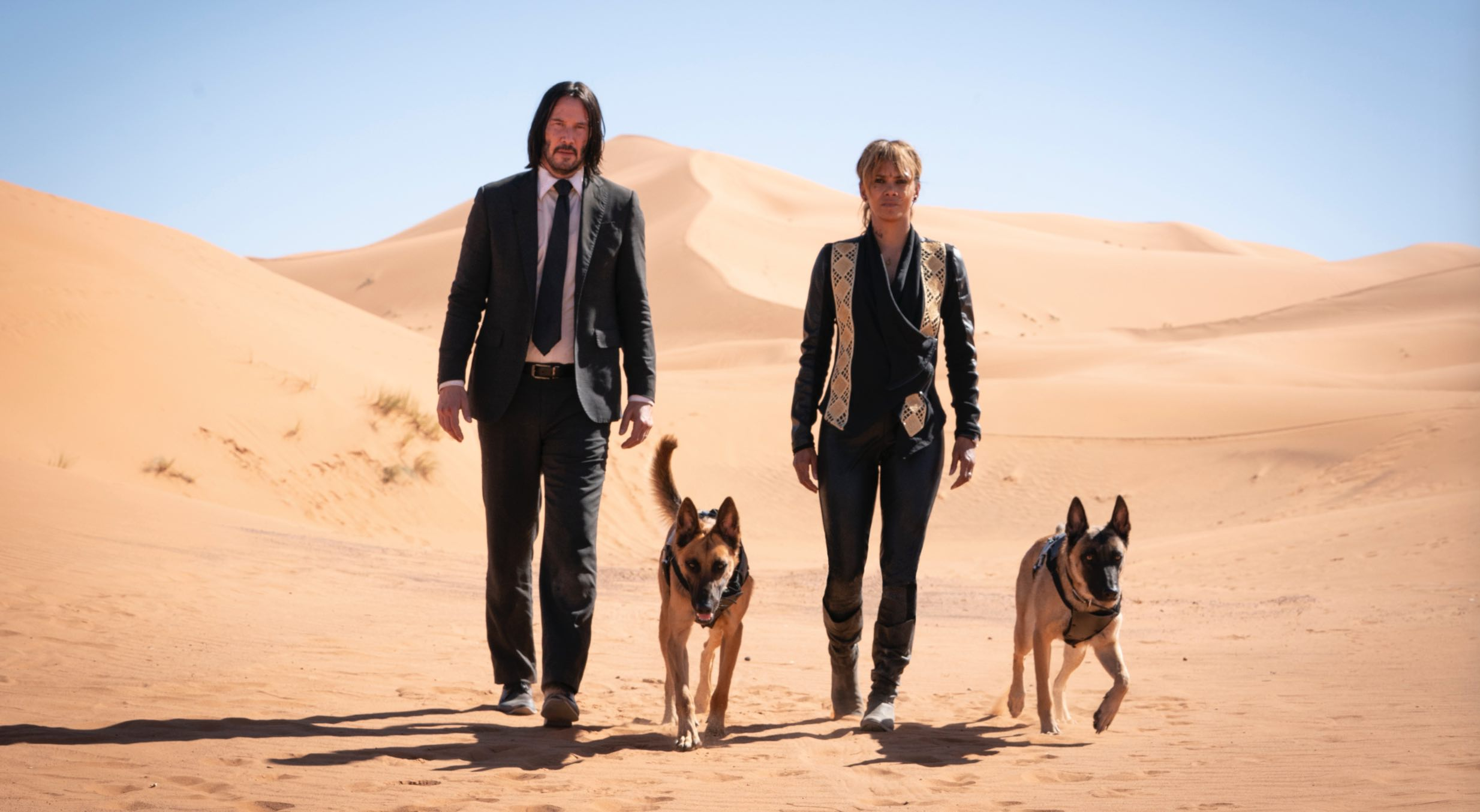 John Wick Keanu Reeves Halle Berry dogs