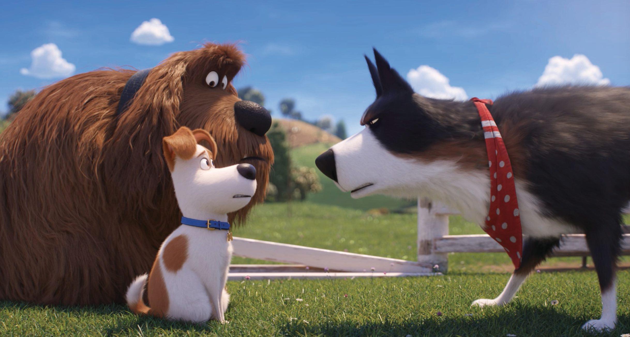 Secret Life Pets 2 dogs