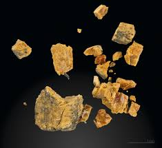 Curso de Posgrado: Introducción al Análisis de las Trazas Fósiles. Aplicaciones en Sedimentología y Estratigrafía. Parte I.