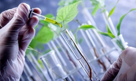 Capacitación Docente: Biotecnología hoy