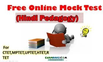 hindi-pedagogy