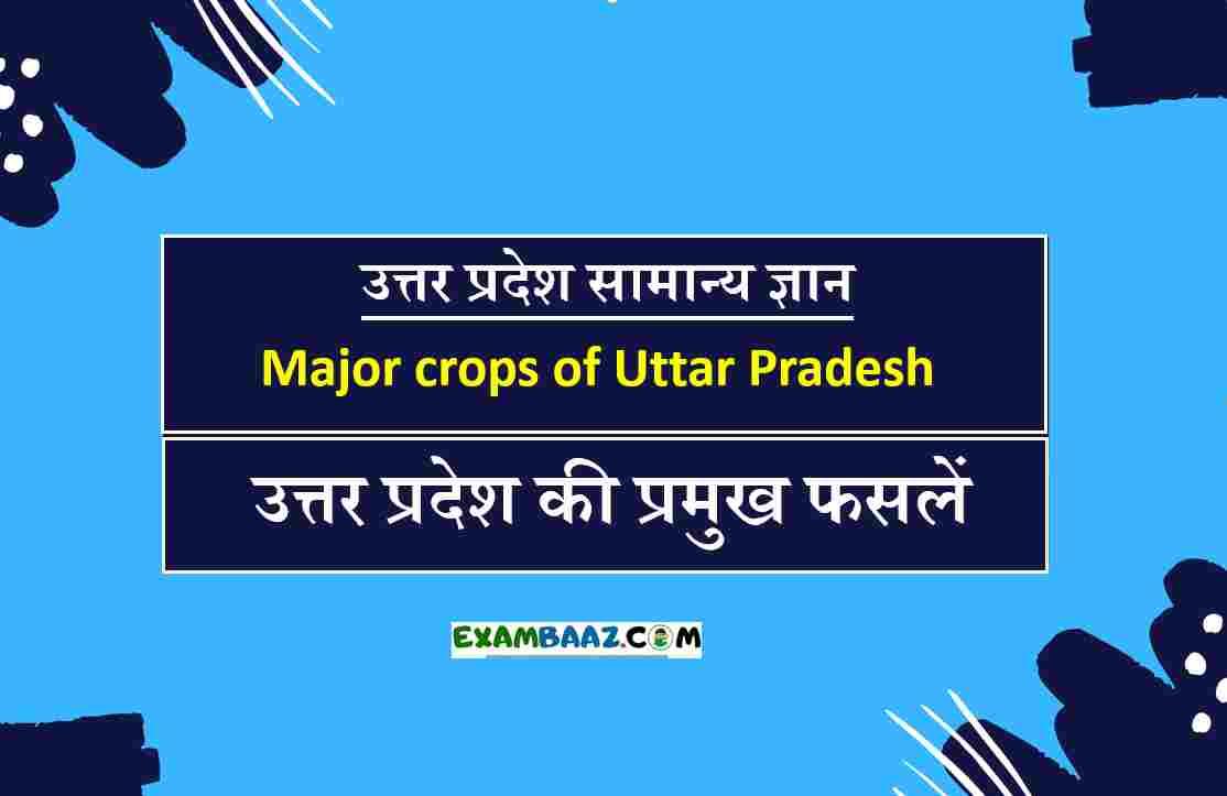 उत्तर प्रदेश की फसलें (Uttar Pradesh ki Pramukh Fasle)