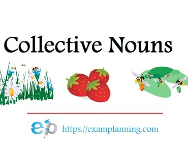 collective-nouns