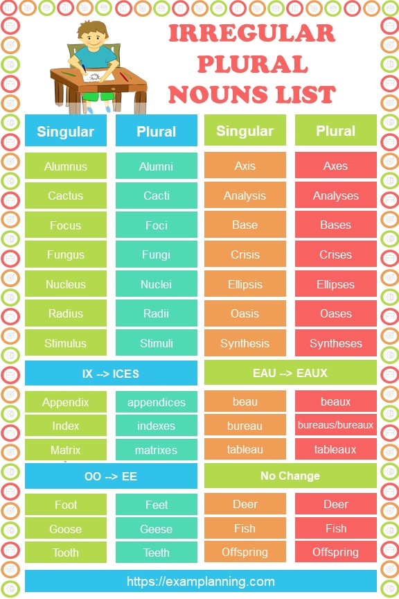 Irregular Plural Nouns (List and Examples)
