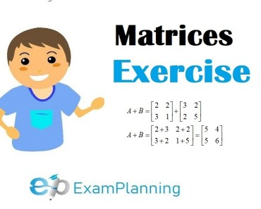 matrices exercises and solutions