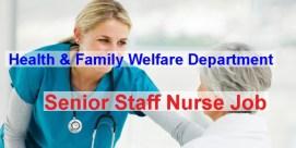 senior staff nurse job circular