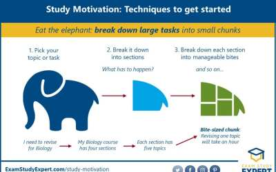29 ULTIMATE Study Motivation Strategies – Backed By Science