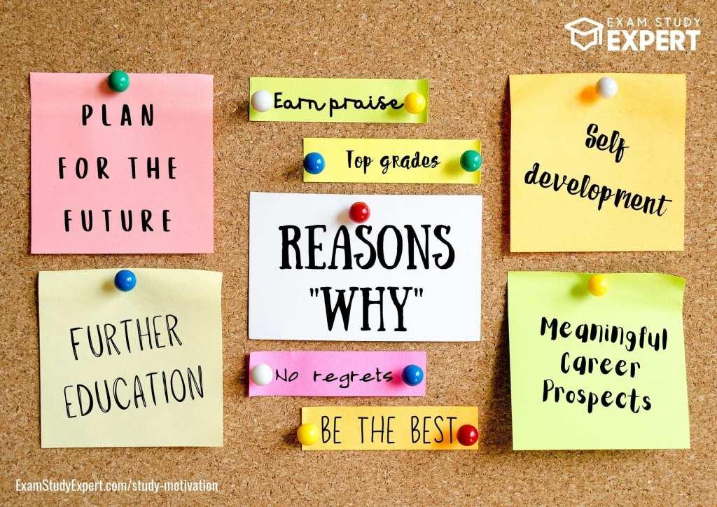 Study motivation reasons