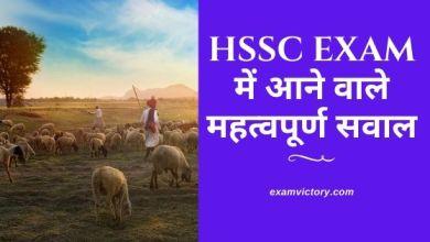 Photo of HSSC Exam में आने वाले महत्वपूर्ण सवाल