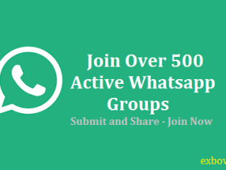 Whatsapp Group Link