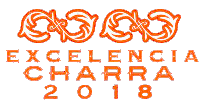 Programa-Excelencia-Charra-Fase-2