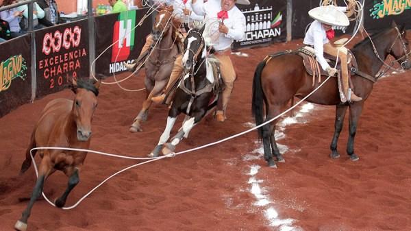 Fernando Muñoz Ledo acertando una de sus tres manganas a caballo para Rancho La Necedad