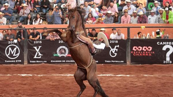 """Pedro Cordero de Tres Regalos """"A"""" lució esta fabulosa jineteada de yegua"""