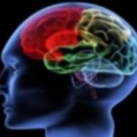 ¿Es suficiente la inteligencia para resolver problemas?