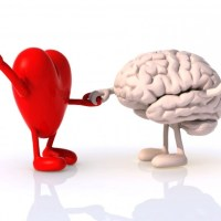 Gerencia de los afectos