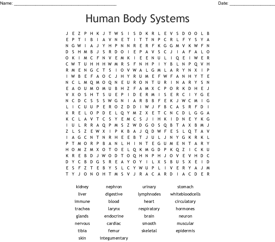 Inside The Living Body Worksheet Answers