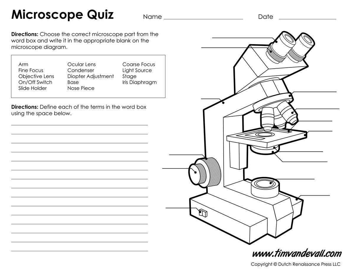 Microscope Labeling Worksheet