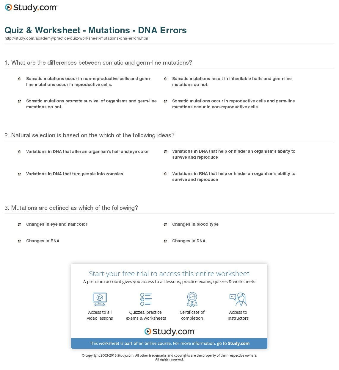 13 3 Mutations Worksheet Answer Key