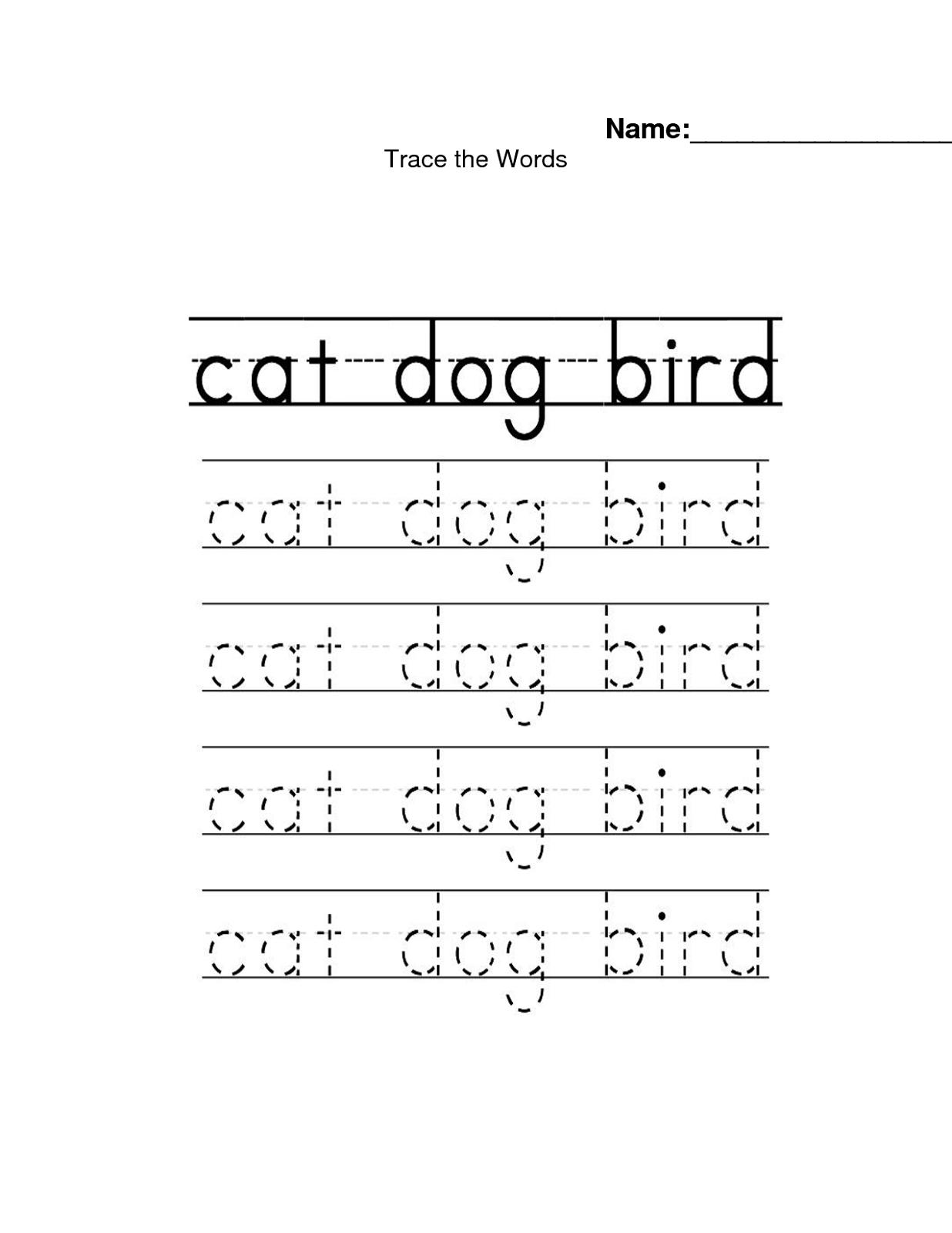 Traceable Names Worksheets