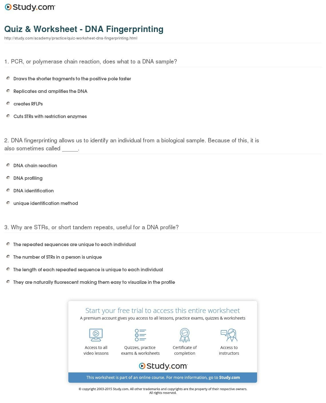 Dna Profiling Worksheet