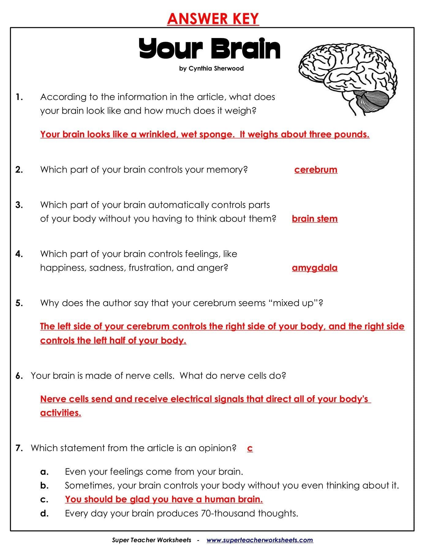 Super Teacher Worksheets Com