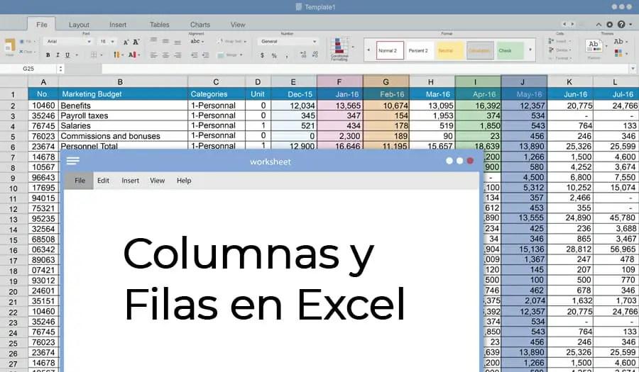 Columnas y filas en Excel