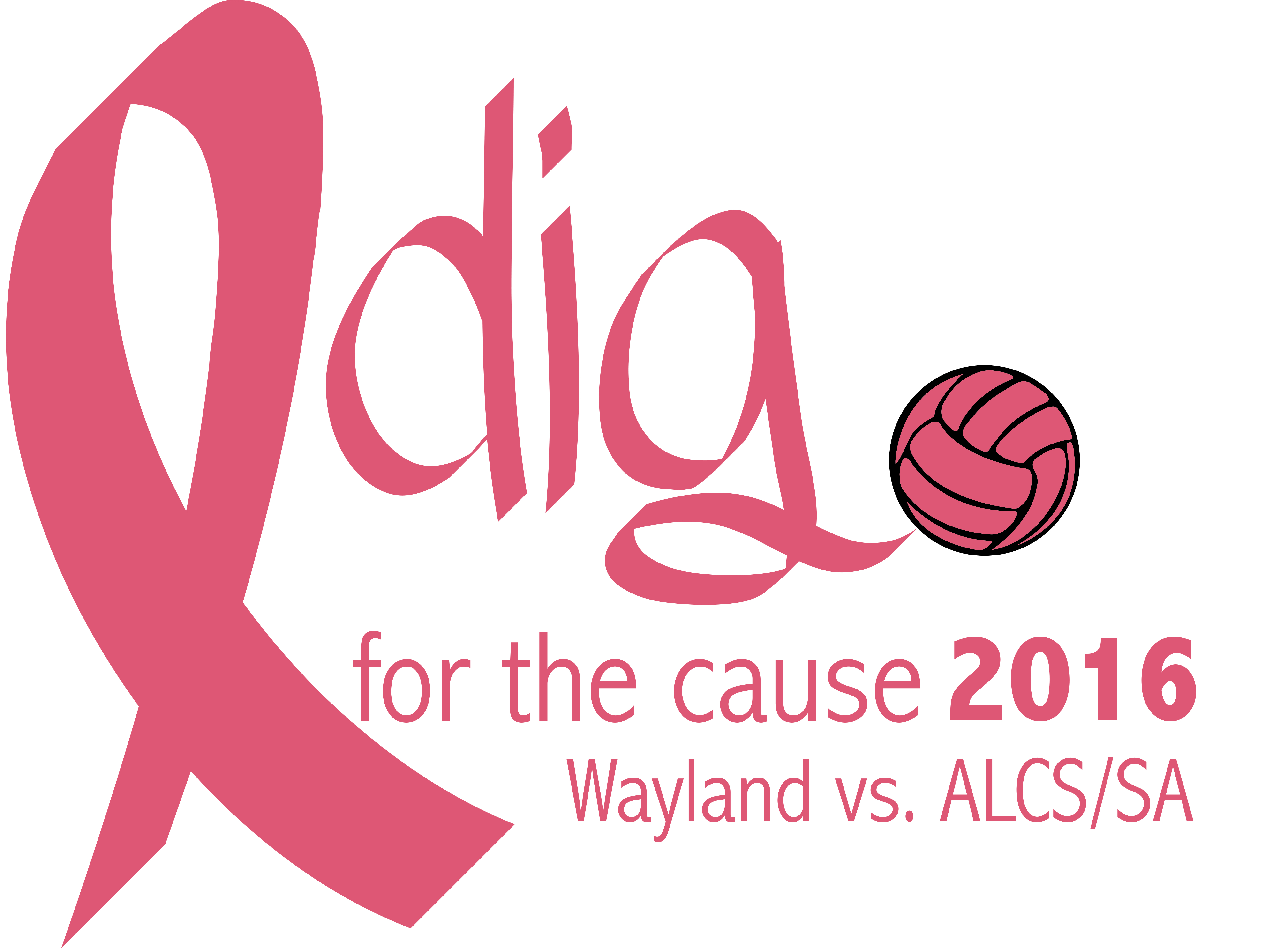 2016 Dig for the Cause Logo