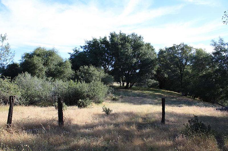 ranch3 (16)