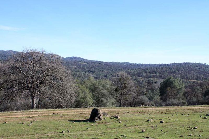 ranch6 (2)