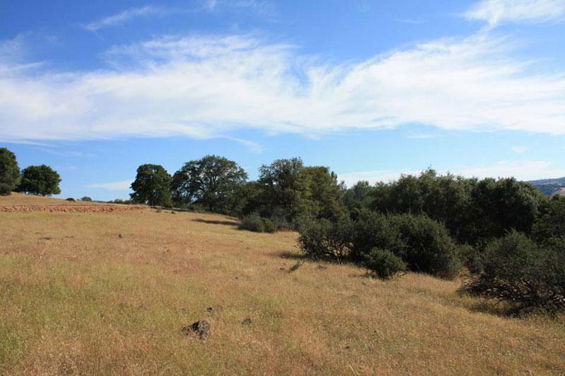 ranch6 (9)