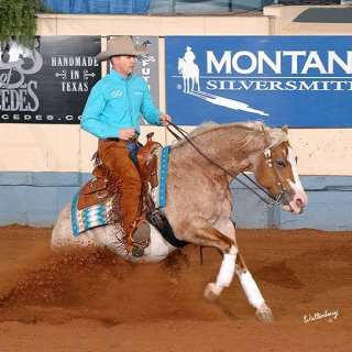 yukon stop horse barrel racing